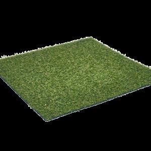 Astra_Star grass sttswings