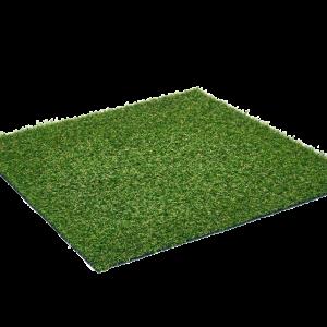 Cocoon_Lizard Grass sttswings Carlow