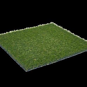 Riviera_Mountain_Synthetis-grass_sttswings_Ireland